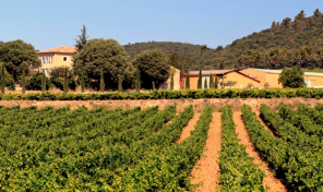 A Vineyard with over 130 Hectares & AOC Ratings in the Var, Provence