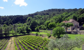 Provence Vineyard Property with 65 Hectares including 22 Hectares of AOC Production